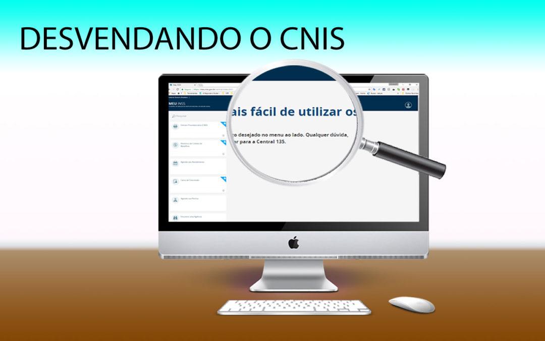 Desvendando o CNIS